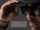 Album: Shaggy – Hot Shot 2020 Download